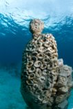 Jason de Caires Taylor, The listener, underwater sculpture Depth 5m, Punta Nizuc (México).